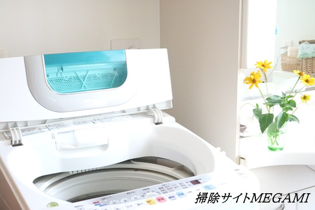 洗濯 マスク